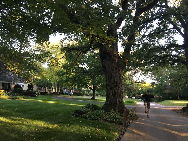 Promenad i grannskapet, Cary