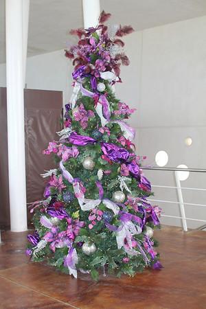 Cozumel, Mexico 12/2012