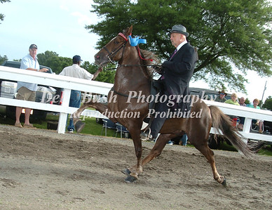 CLASS 8  OPEN PARK PEFORMANCE SPECIALTY