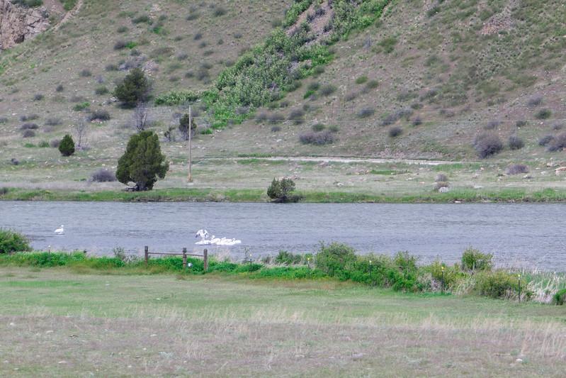 Southern Montana Hwy 84