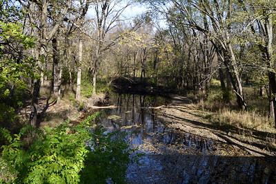 Central IL – near Lake Springfield, Sugar Creek & Lick Creek, in Sangamon county