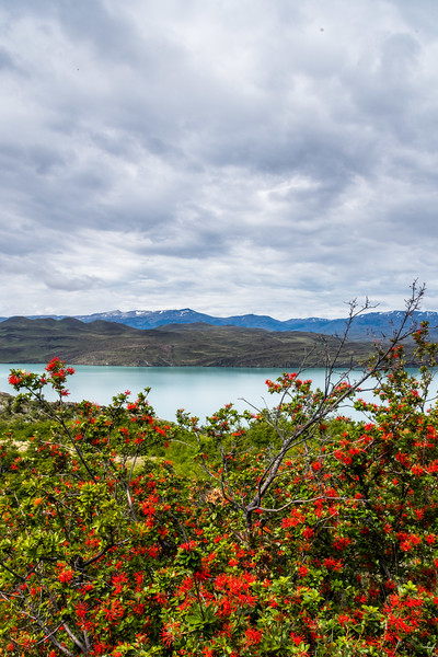 Patagonia-30.jpg