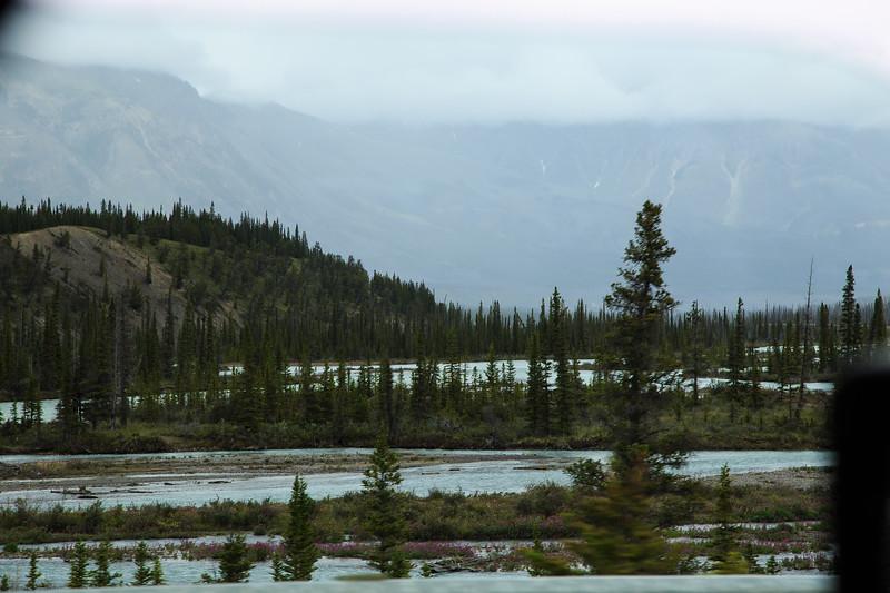 Banff, Alberta Canada 2019-2417.jpg