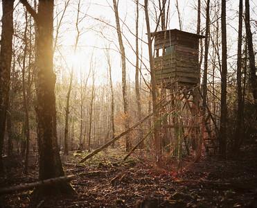 200325 Makina67 | Im Wald