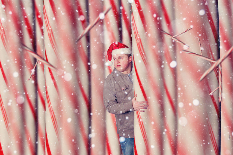 Lost In The Candy Cane Forest..... 310/365 12/7/13