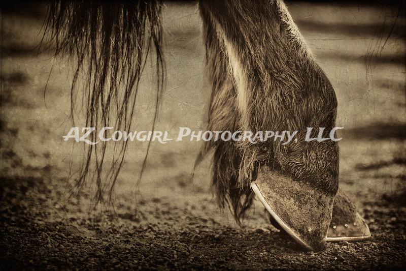 Dirty Hooves