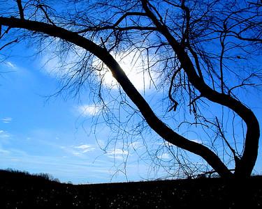 Woodlawn trail (Wilm., DE)