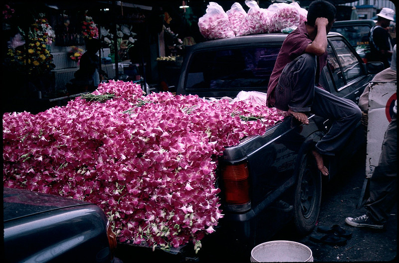 LaosCanada1_042.jpg