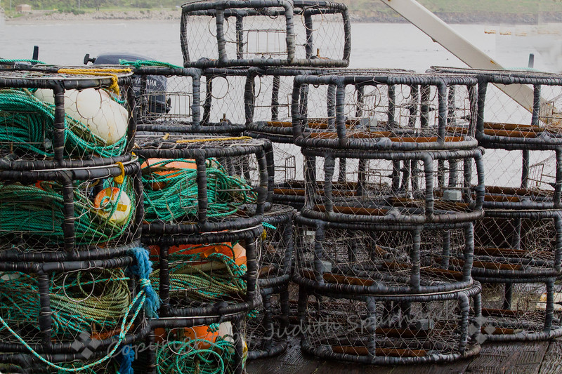 Dungeness Crab Traps