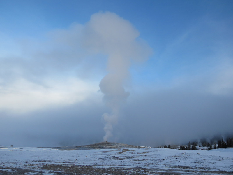 Old Faithful in the Morning