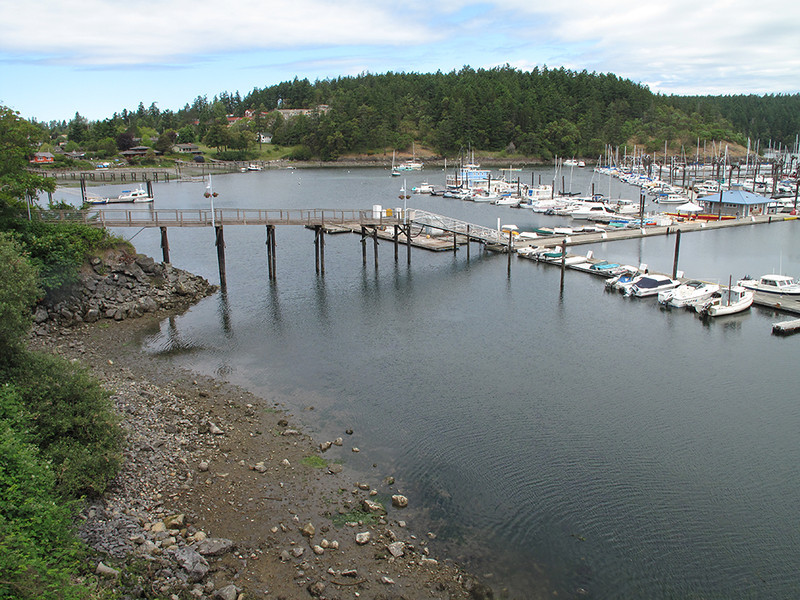 Friday Harbor, San Juan Island. June 7, 2013