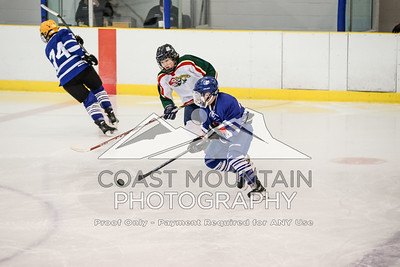 Greater Vancouver Mustangs