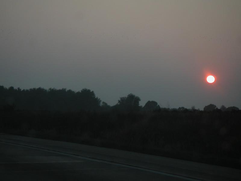 06 Sun.jpg