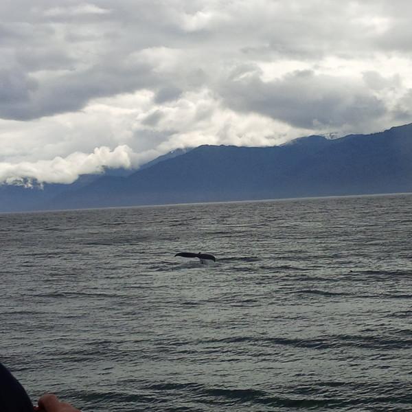 Alaska 16.jpg
