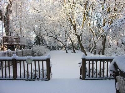 Backyard snow January 21 2006