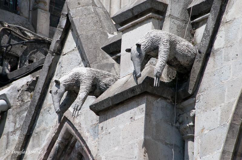 Quito, Ecuador Gargoyles on the Basilica del Voto Nacional