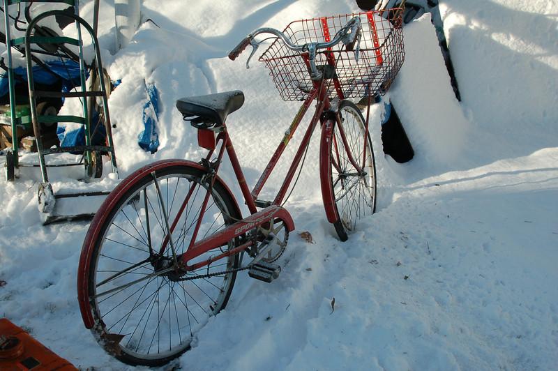 Bike roman.jpg