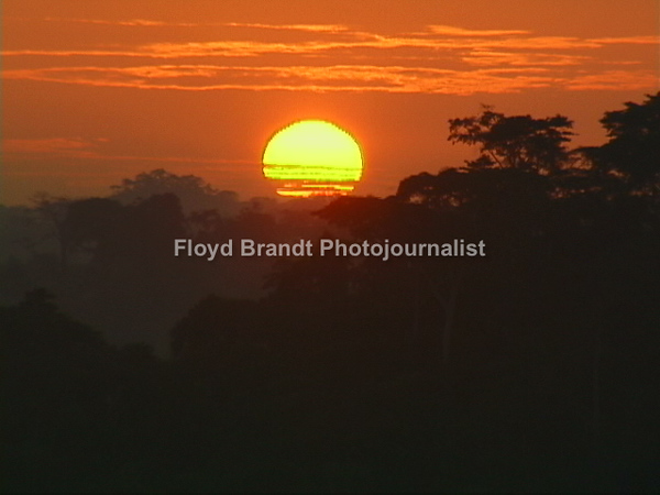 Floyd Brandt Photojournalist 40 days and nights in Cameroon Africa traveling from the South to the North. Sunset in the Rain Forest.
