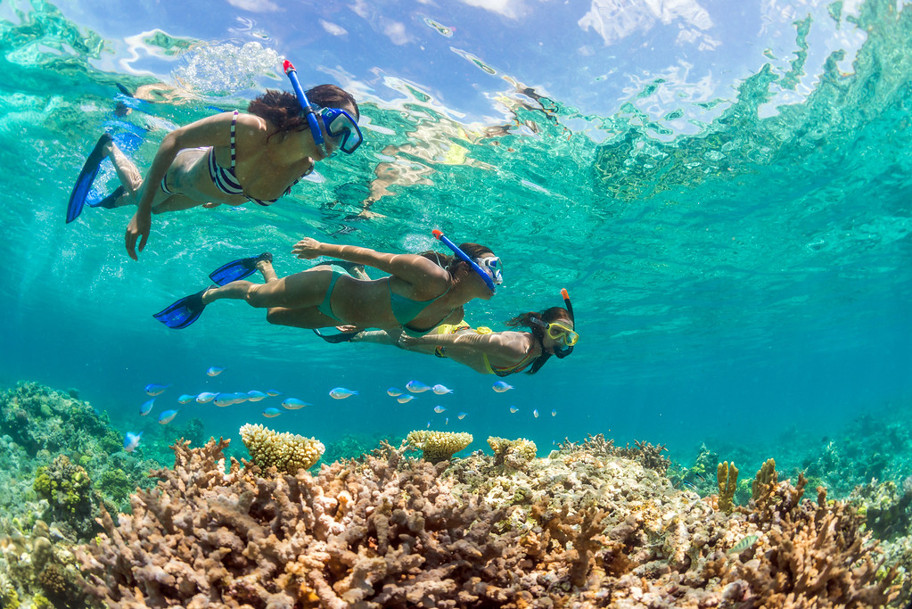 5 Incredible Things to Do in New Caledonia: Snorkeling
