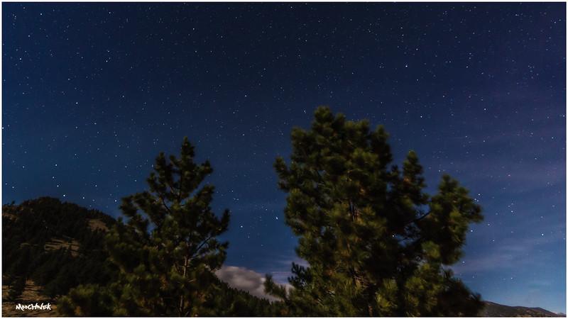 Stars in Estes Park