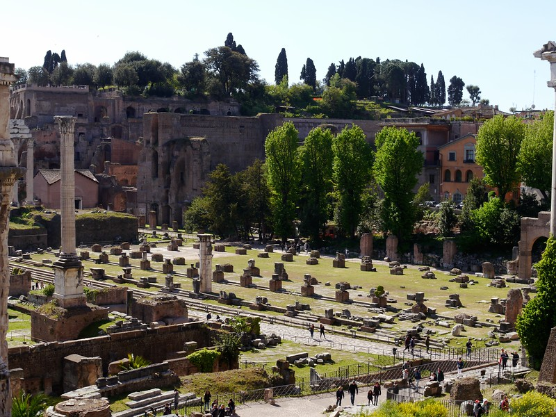 View of the Roman Forum from the Capitoline.
