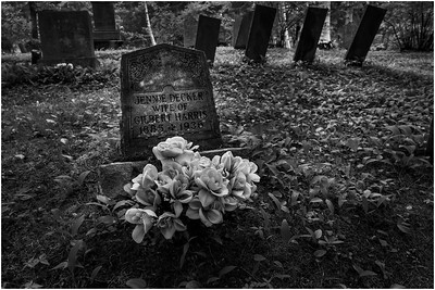 Ancient Burial Grounds BW