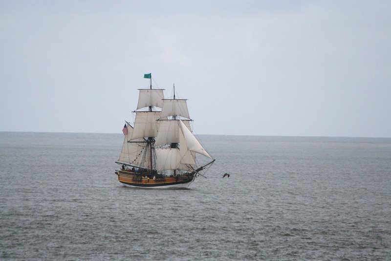 Lady Washington under sail in Grays Harbor, Wash. with a new suit of sails purchased after the Historical Seaport's 2008 Raise the Sails! campaign. Photo by Ron Arel.