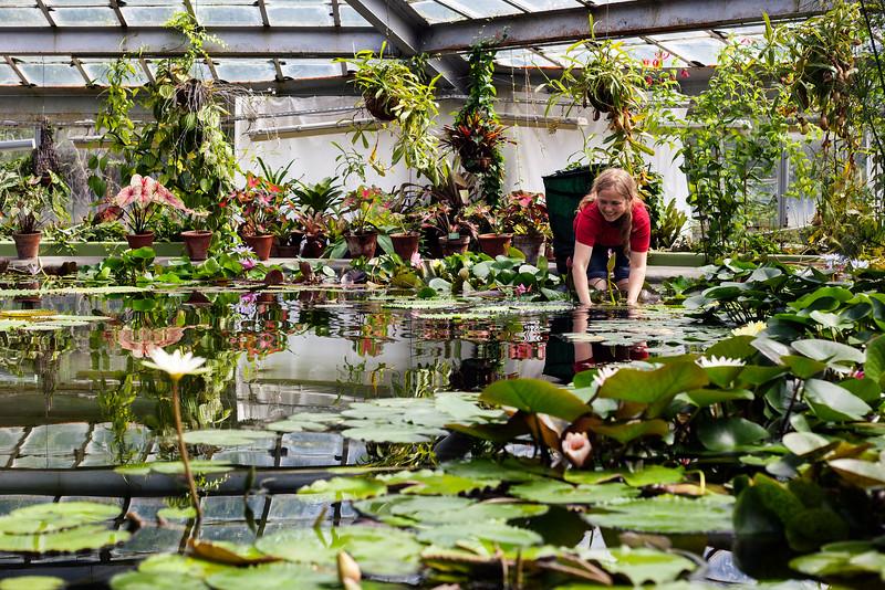 Botanical Garden Worker. Saint Petersburg, 2016.