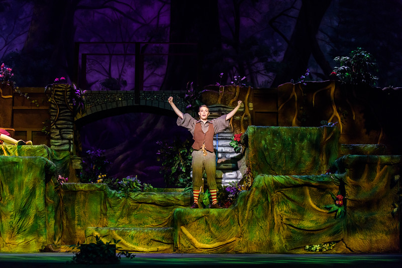 20150423 Into the Woods8837.jpg