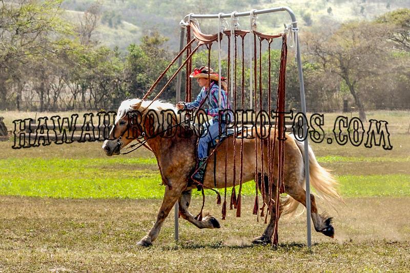 COWBOY CURTAIN