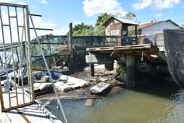 Hurricane Matthew Aftermath at Marshside Grill 10-10-16
