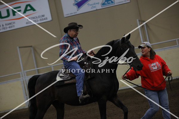 All Breed Leadline any age