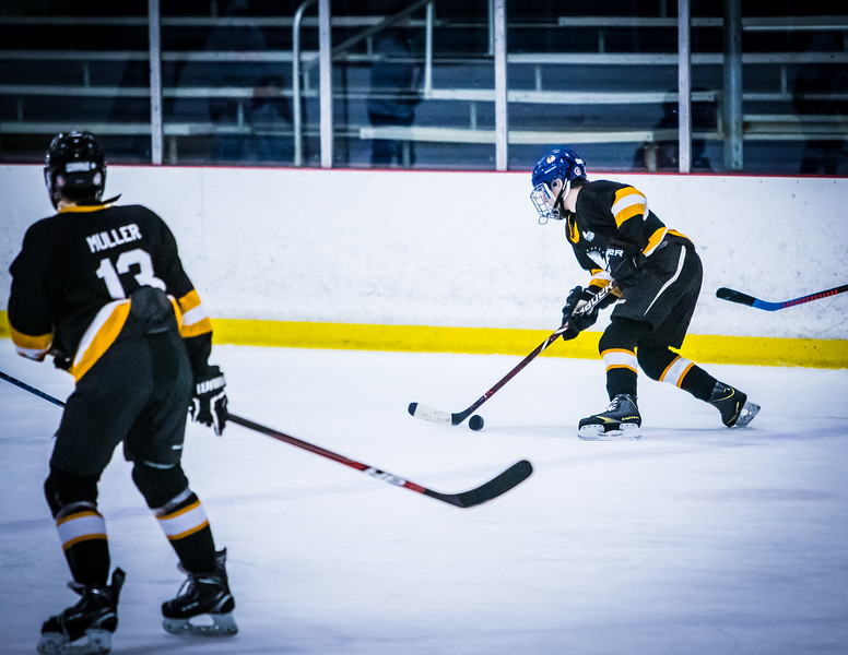 Bruins2-480.jpg