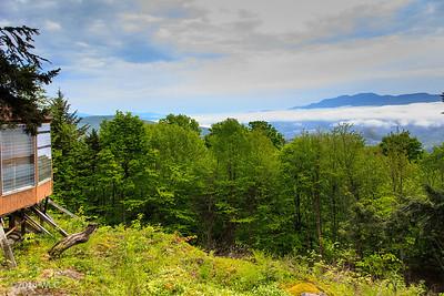 2014 Vermont