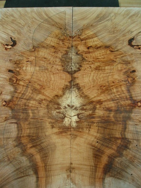 BLDesign.us:  Maple Burl 2-004  sold  Used for back of #015  Photos: Beau Leopard. Slideshow Music: Nick Rosenthal and Beau Leopard.  All Content © 2005-2007  Beau Leopard Design .:. Custom Bass Guitars