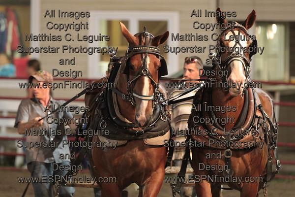 2012 Horse Pulls