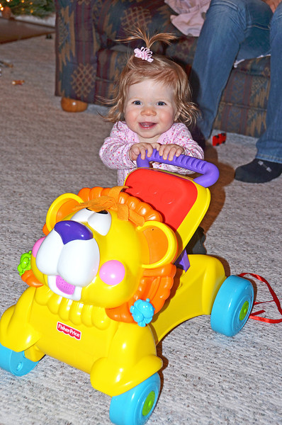 2012-12-03 ––– Aili can't walk, but she can stand behind the tiger and push it. if it gets going too fast she crashes to the floor, but it makes her happy.