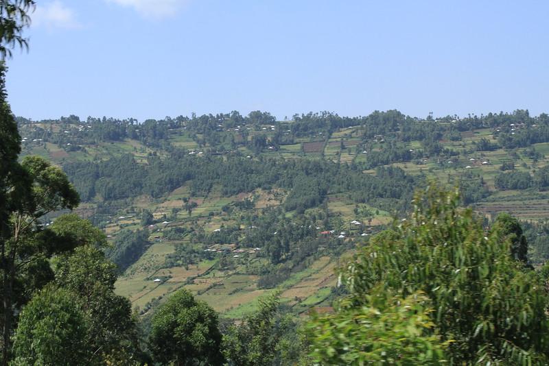 Kenya Part1 '15 2623.JPG