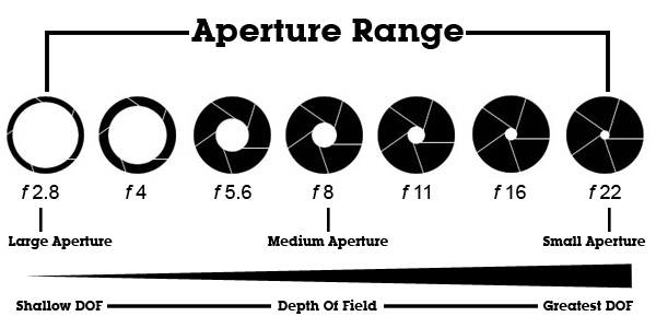 Light and Exposure Charts. and Focal Length