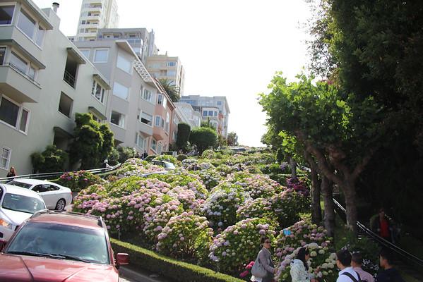 LUMBARD STREET SF
