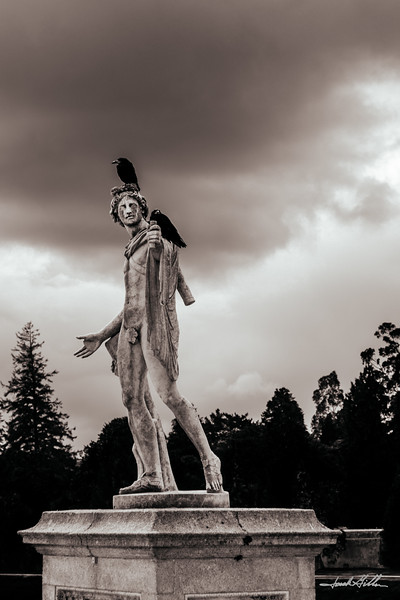 A statue in Powerscourt Gardens