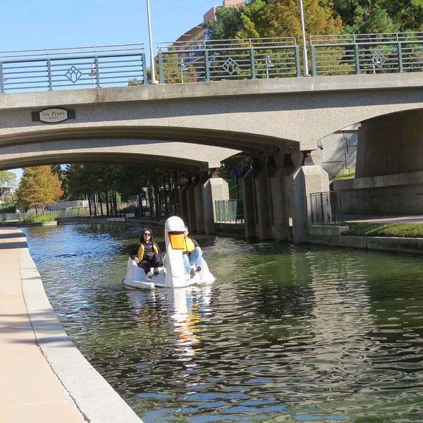 bridge with duck.JPG