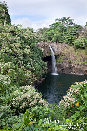 JAN / FEB 2012:  HILO, HAWAII