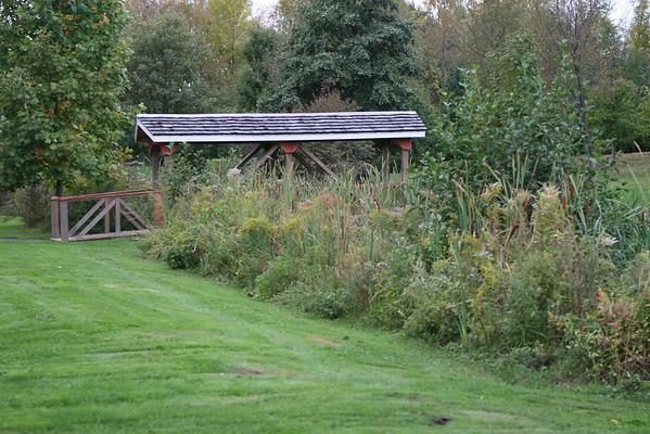 Kent Park Arboretum-fall