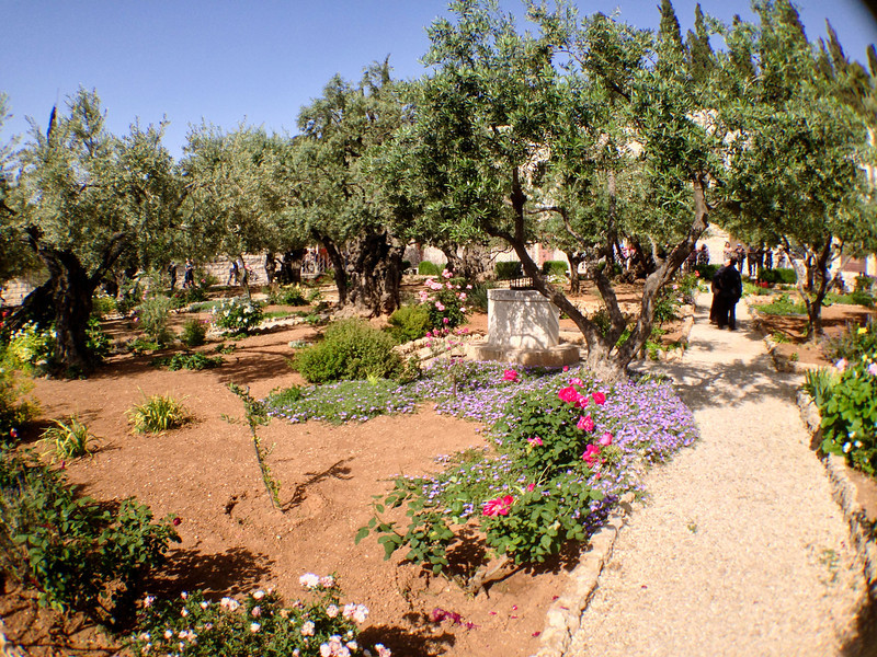 Church of all Nations on the Mount of Olives, at the site of the Garden of Gethsemane.