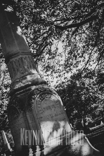 Graceland110218-283.jpg