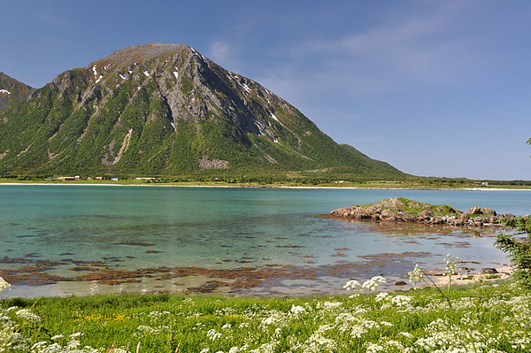 Lofoten Nature