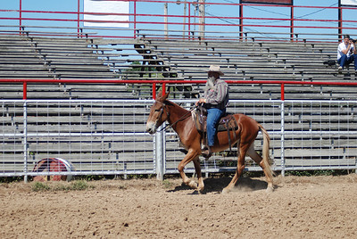 Senior Citizen Gaited Class and Style