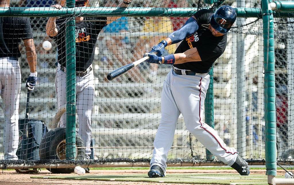 . Twins outfielder Oswaldo Arcia takes a swing in the cage during live batting practice. (Pioneer Press: Ben Garvin)