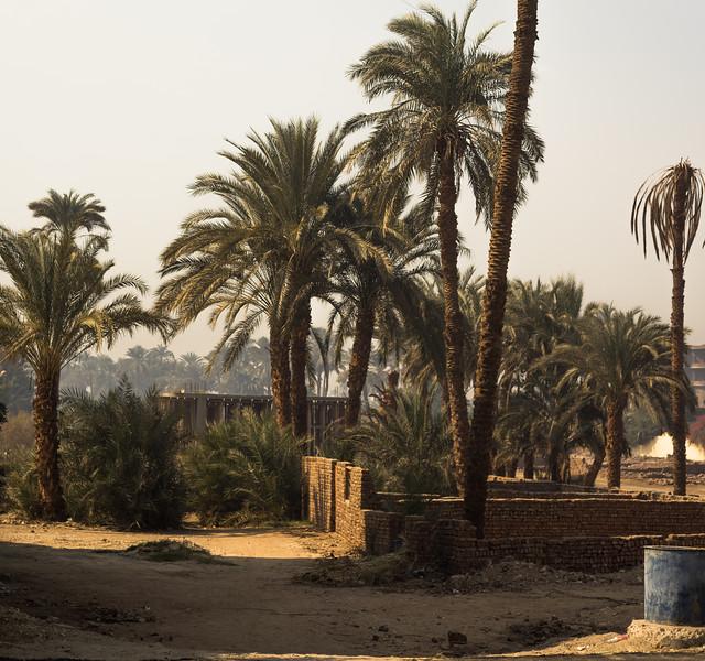 Callejón trasero del Nile Valley Hotel. Lúxor